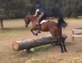 guest-blog-69-learning-lows-bad-eventer