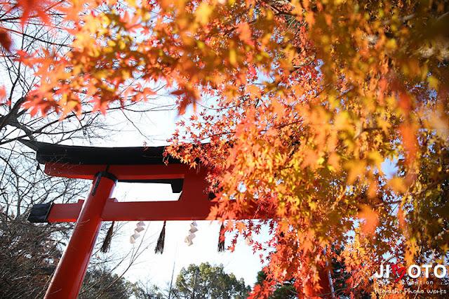 宇治上神社でお宮参り出張撮影