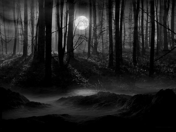 Misteri kegelapan hutan Zombie Land yang menakutkan