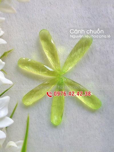 Nguyen lieu hoa pha le tai Cong Vi