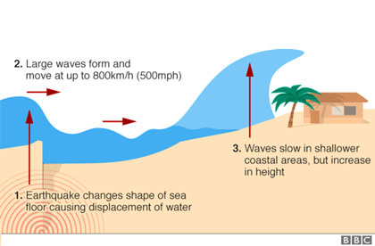 Contoh explanation text about tsunami