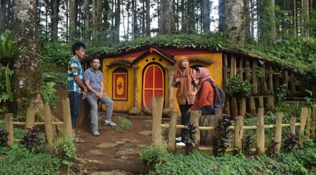 Lokasi dan Harga Tiket Masuk Hutan Pinus Pasir Langlang Panyawangan Purwakarta Jawa Tengah