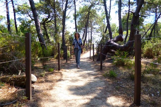 Curtindo o passeio nos pinheiros do Parco dell'Uccellina
