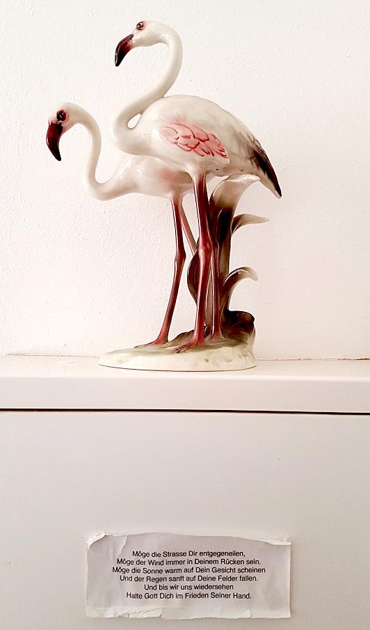 adidas neo: Auf den Flamingo gekommen