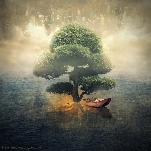 09-Sea-Tree-Even-Liu-Surreal-Photo-Manipulations-and-the-Lantern-www-designstack-co