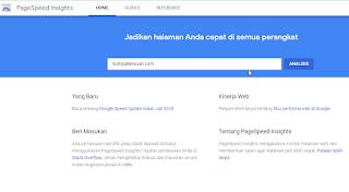 cara mengecek kecepatan website dengan PageSpeed Insight