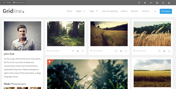 GridLine v1.0 – Responsive Grid Theme Tumblr