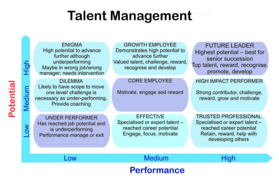 Talent Management 9 Box Grid