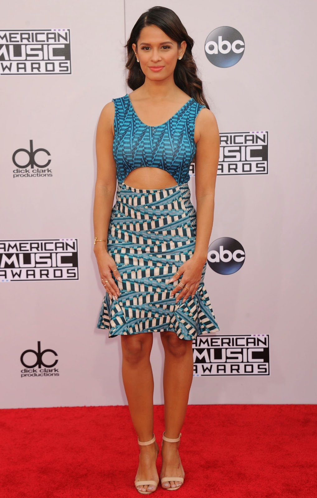 Rocsi Diaz  - 2014 American Music Awards - Red Carpet