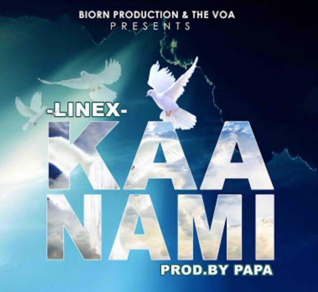 Linex - Kaa Nami (Audio) mp3 download