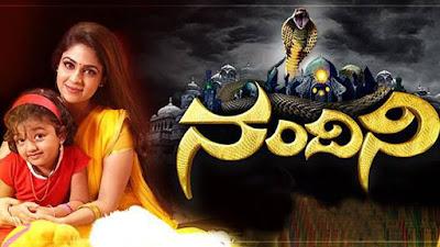 Nandini , Udaya TV,