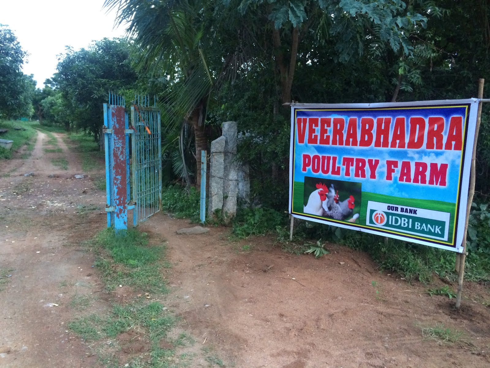Veerabadra Poultry Farms: MODEL PROJECT REPORT for Broiler
