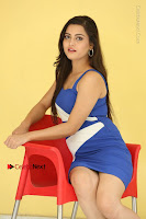 Cute Telugu Actress Shipra Gaur High Definition Po Gallery in Short Dress  0059.JPG