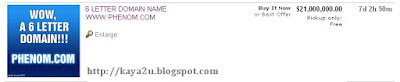 buat-duit-online-domain