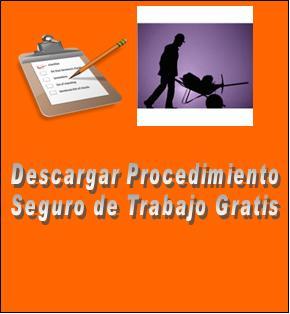Descargar procedimiento seguro de trabajo 1