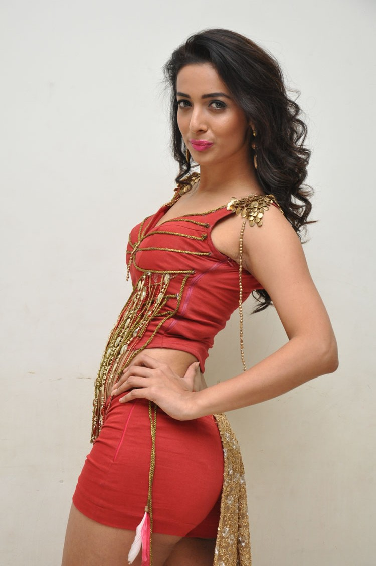 Heena Panchal New sizzling photo gallery-HQ-Photo-29