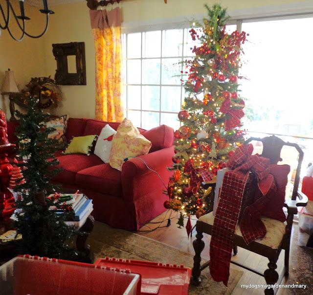 mydogsmygardenandmary: WHERE DID CHRISTMAS GO TO?