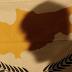 Η οριστική αποδόμηση της Κυπριακής Δημοκρατίας άρχισε στην Γενεύη