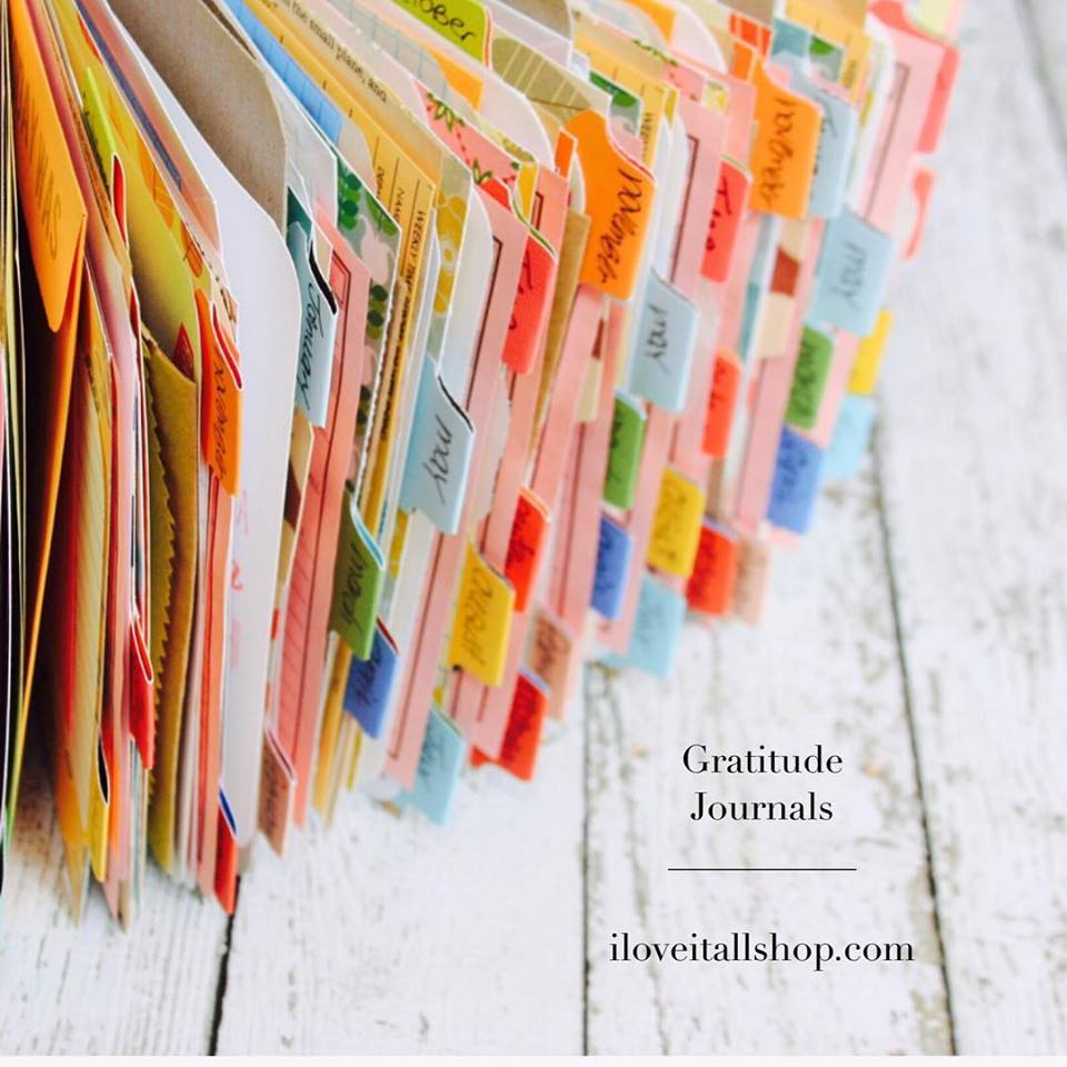 #gratitude journal #gratitude #grateful #journal #thankful #thankfulness #thankful notebook #notebook #travelers notebook