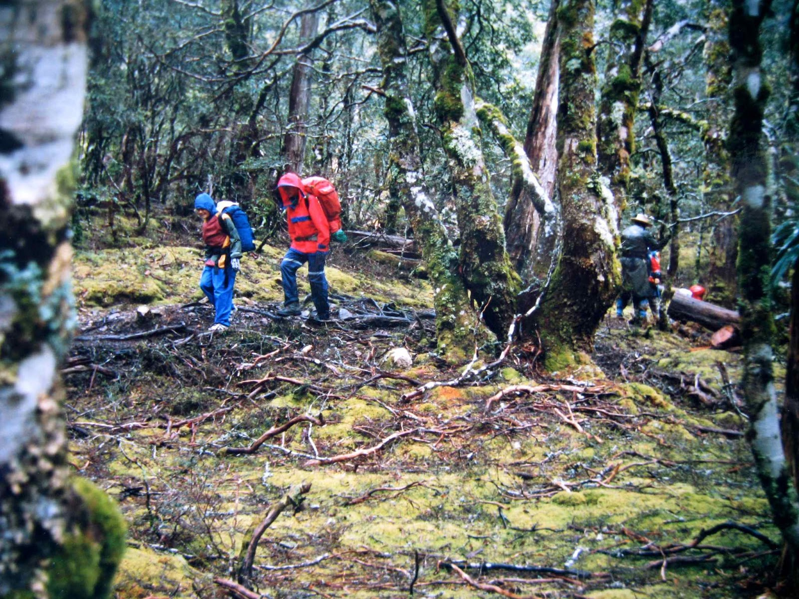 Overland Trail 1988 Jan – with 7 and 9 year olds   Natureloverswalks