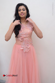Actress Neha Hinge Stills in Pink Long Dress at Srivalli Teaser Launch  0140.JPG