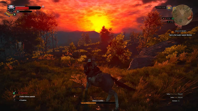 Download The Witcher 3 Wild Hunt Game of the Year Edition Repack