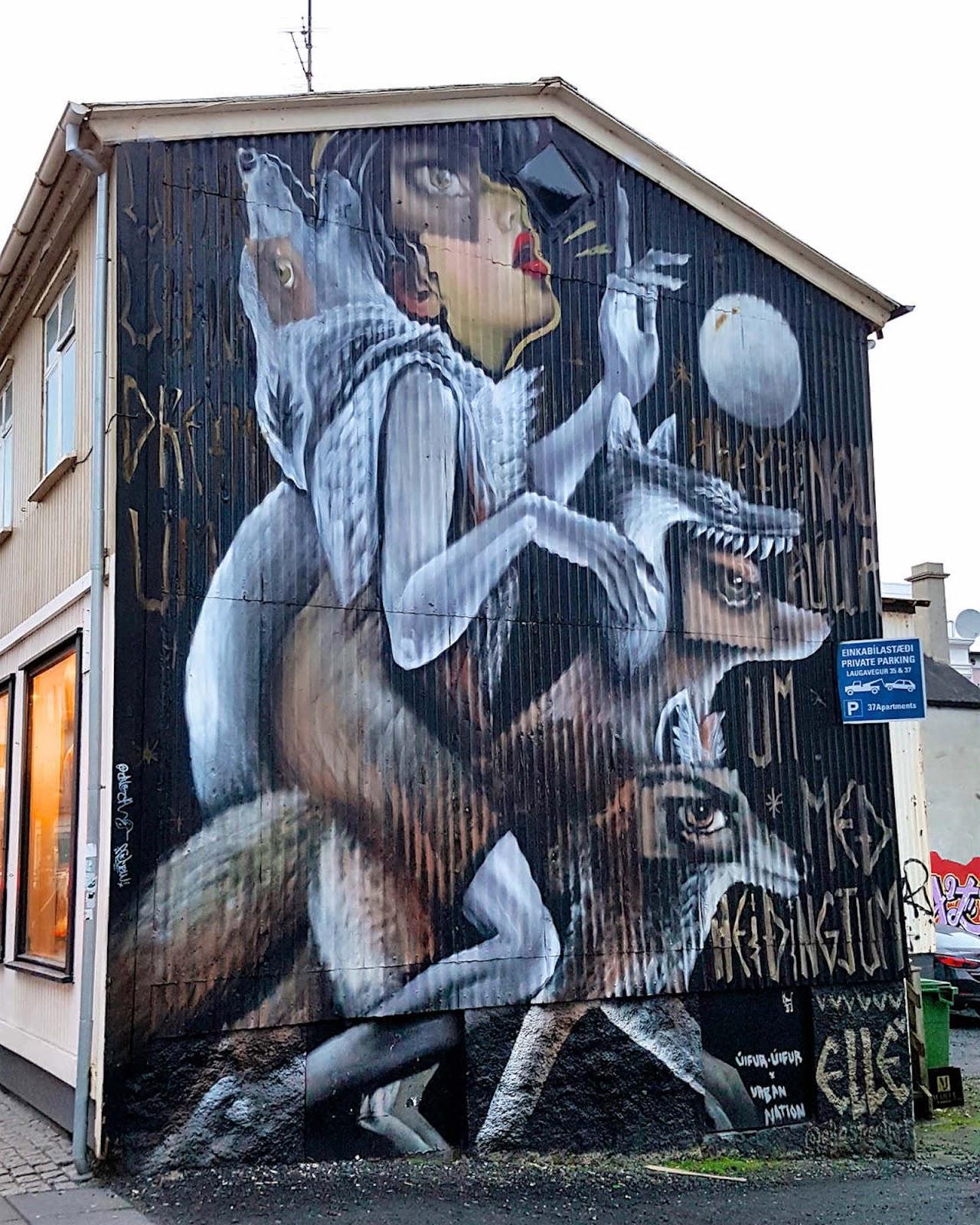 ufunk-reykjavik-street-art-8.jpg
