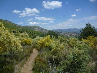 GR-60 descenso por el arroyo de la Chorrera