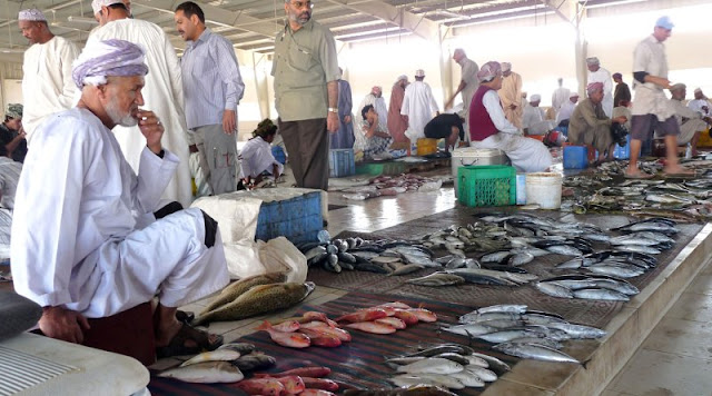 Sultanate's biggest fishing harbour coming up in Duqm