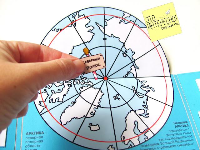 Детям об Арктике и северном полюсе в лэпбуке
