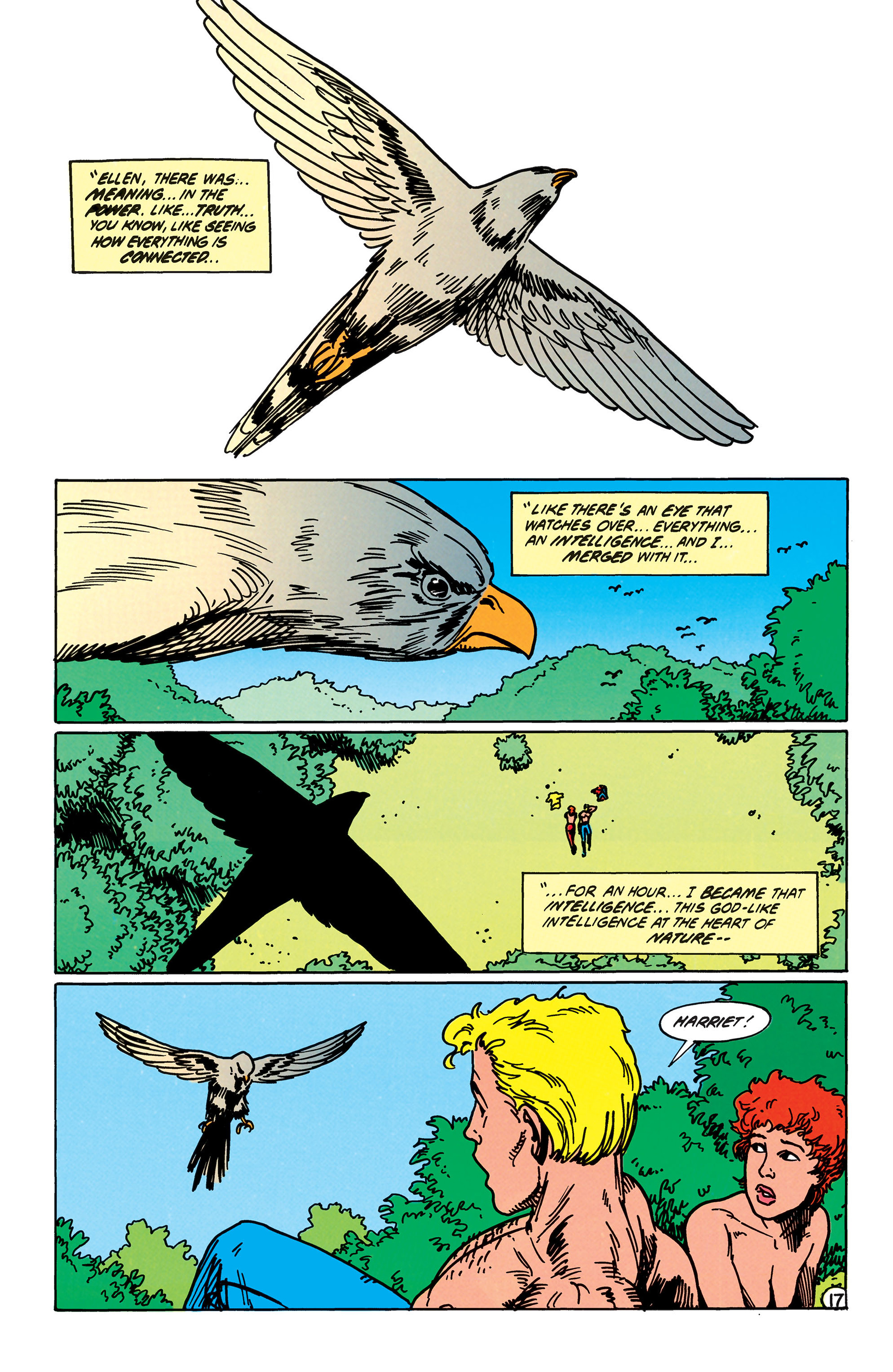 Read online Animal Man (1988) comic -  Issue #41 - 18