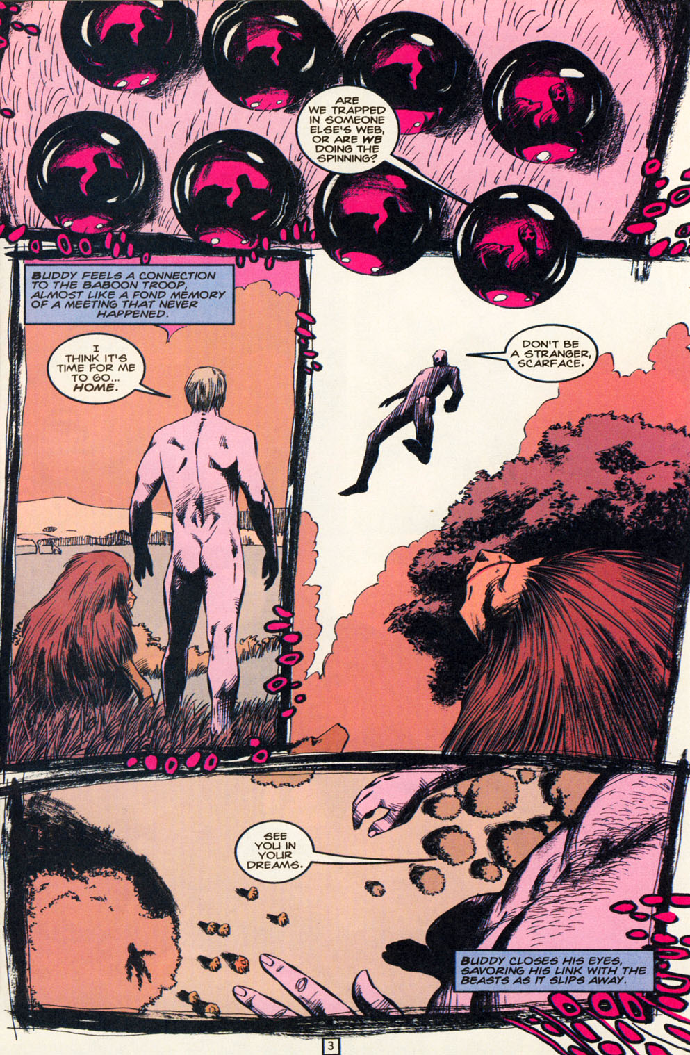 Read online Animal Man (1988) comic -  Issue #82 - 4