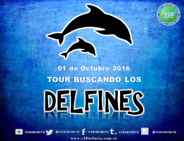 IMAGEN TOUR BUSCANDO LOS DELFINES 01 DE OCTUBRE