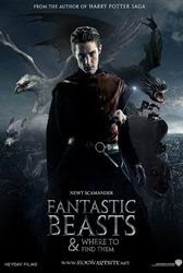 Fantastic Beast and Where To Find Them (2016) HD-TS Vidio21