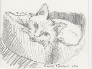 slow down like a cat. Drawing of a cat by David Borden.