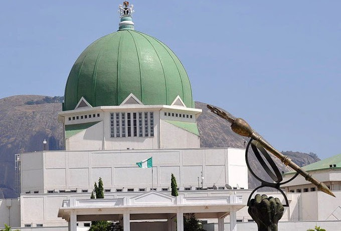 Nigeria Decides: Senators who won't be returning to National Assembly [Full list]