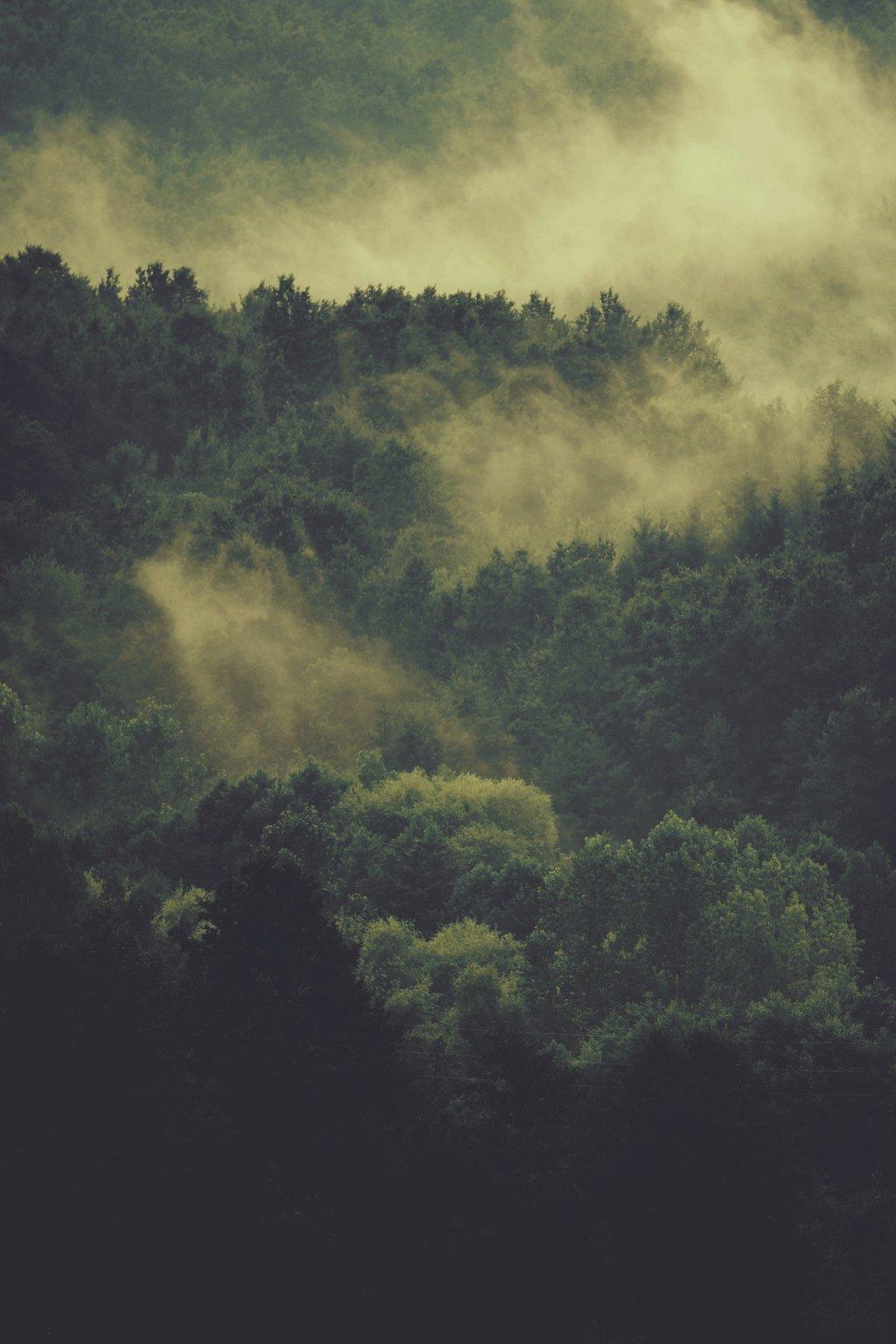 Rüyada şimşek çarptığını Çaktığını gök gürültüsü görmek ne demektir