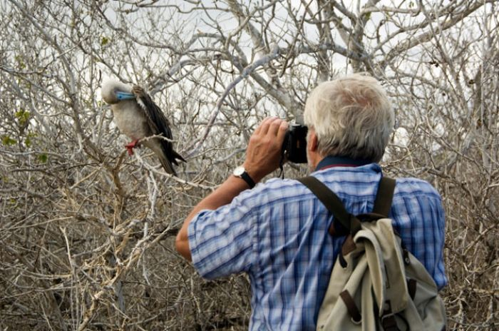 How to Bird Watch (with Pictures) - wikiHow