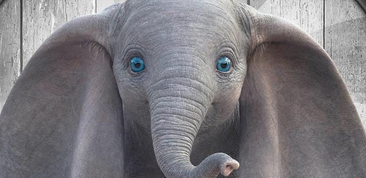 Dumbo 2019 Pôster Recorte