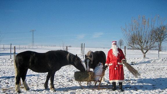 Frohe Weihnachten Pferd.Hufrehe Blog Frohe Weihnachten