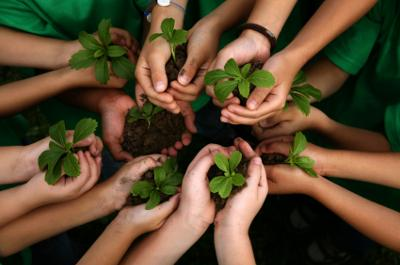 Image result for saving the environment