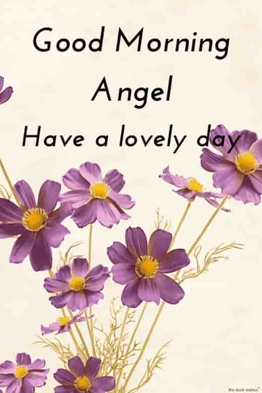 good morning hd image for angel