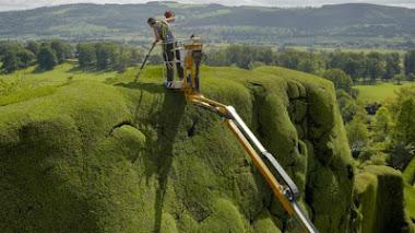 Jardinería extrema de altura en Powis Castle and Garden, Gales