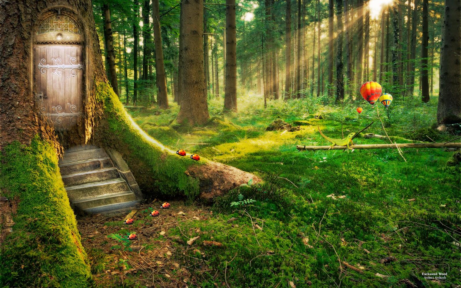 LEARNING GATEWAY: Descriptive Essay - An Enchanted Forest