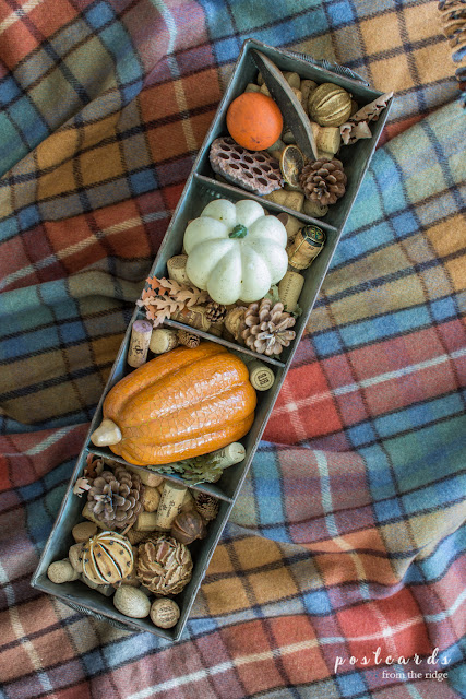 natural fall decor and wine corks in metal chicken feeder on plaid throw blanket