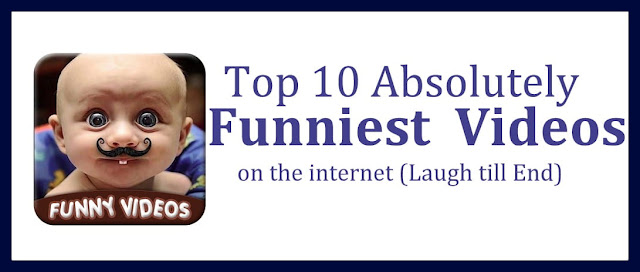 Funniest Video on the internet   Funny Videos