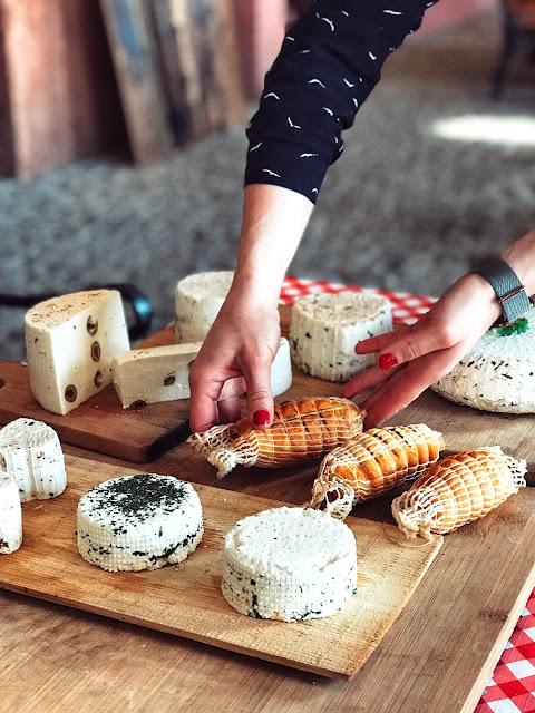 Domowy ser à la Koryciński - warsztaty z marką BROWIN