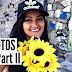 ALINE VISSOTO | GUARATIBA II