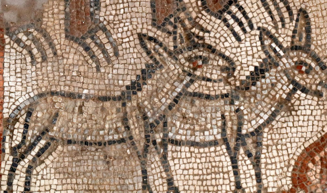 New mosaics discovered in synagogue excavations in Galilee