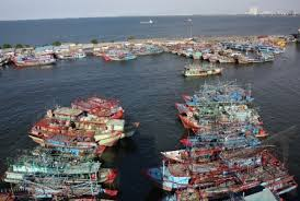 Lemahnya perikanan indonesia PART 2